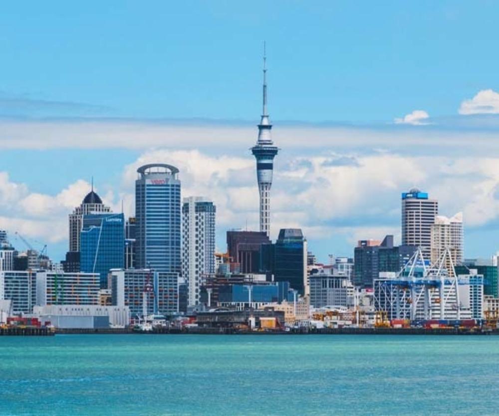 Molemap Auckland Cbd Mole Check Skin Check
